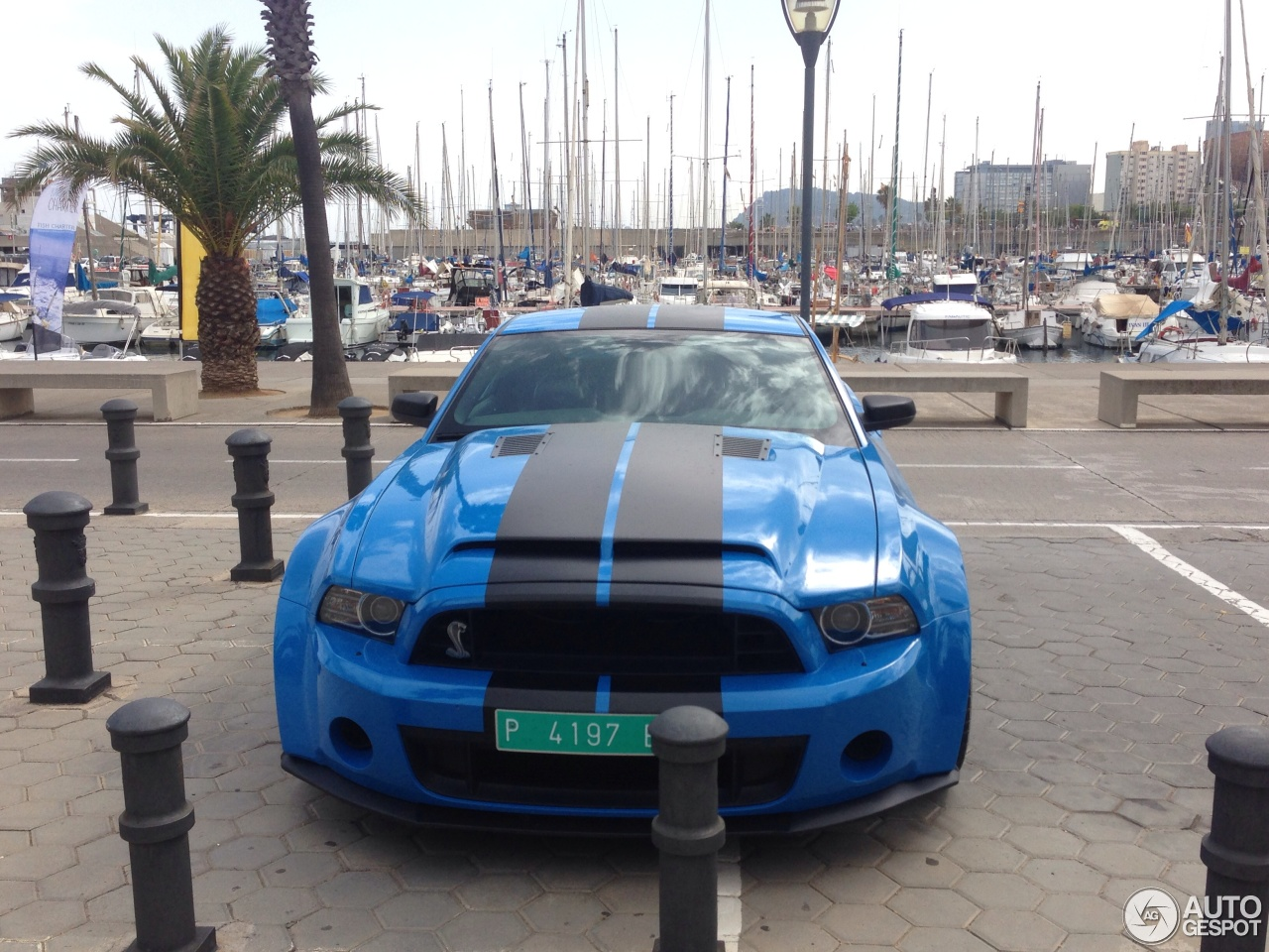Ford Mustang Shelby GT500 2013 - 19 juillet 2014 - Autogespot