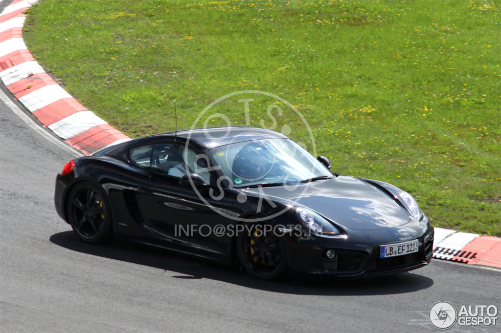 2016 - [Porsche] 718 Boxster & 718 Cayman [982] - Page 2 Porsche-cayman-s-mkii-2015-c152703092014134350_3