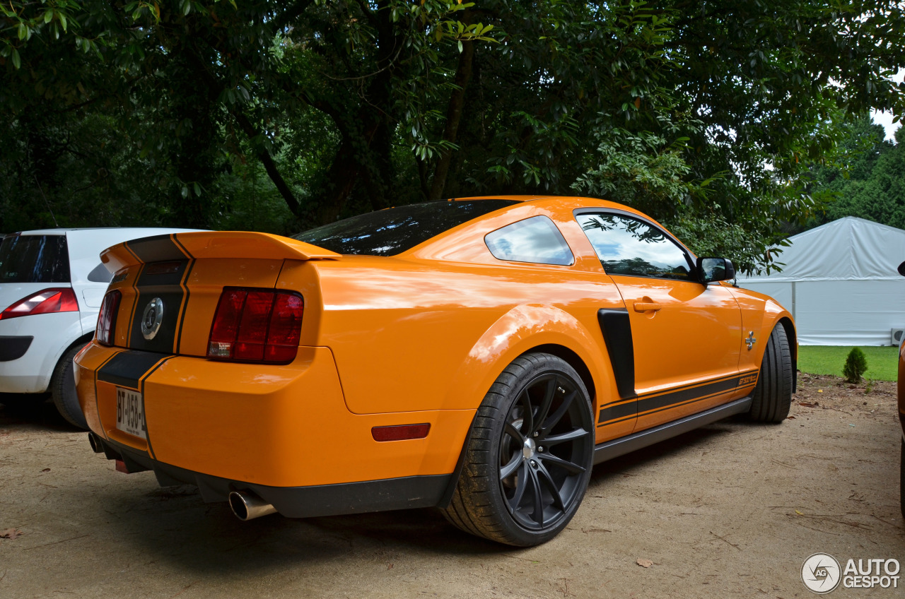 ford mustang shelby gt 500 supersnake 8 septembre 2014 autogespot. Black Bedroom Furniture Sets. Home Design Ideas